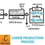cheese production process